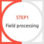 STEP1 Field processing